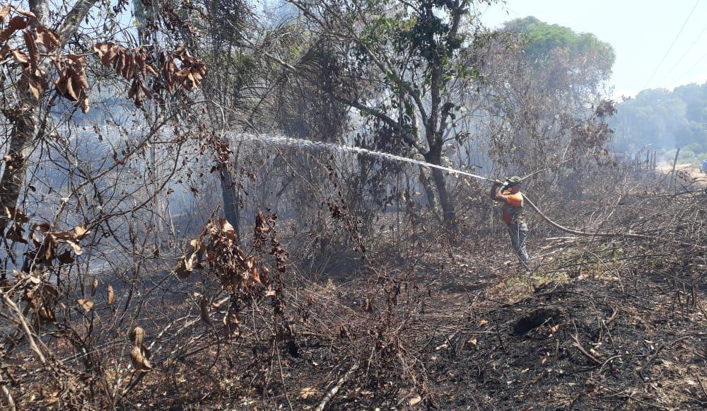 Prefeitura de Maués intensifica combate às queimadas no município